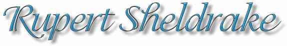 Sheldrake Banner
